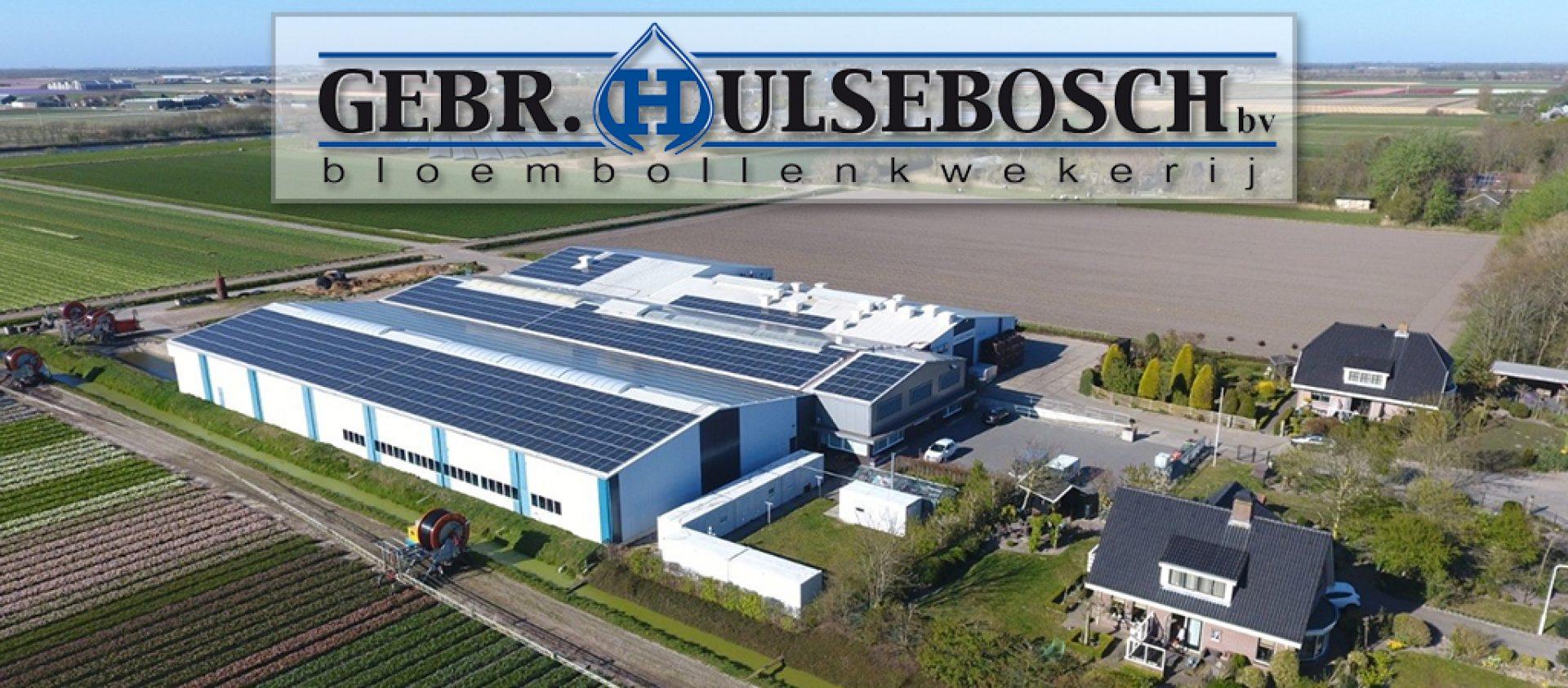 Gebroeders Hulsebosch